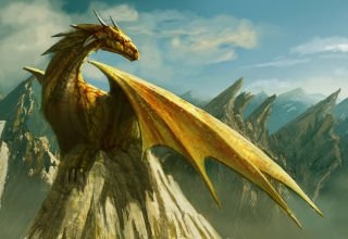 dragon_by_edli