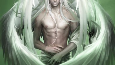 the_angel_by_heise